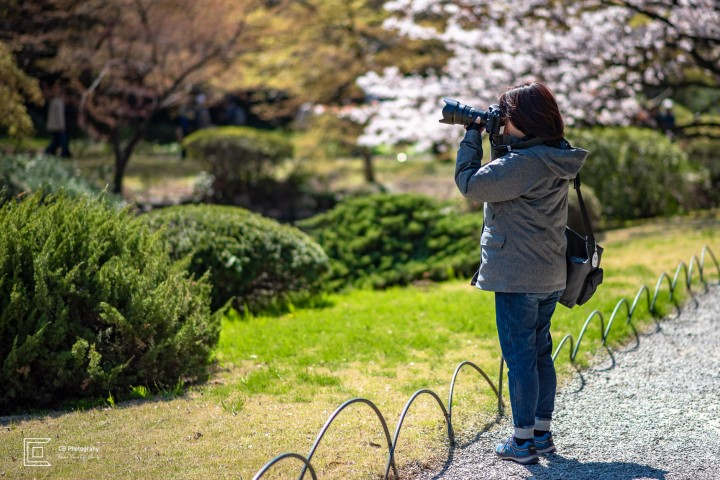 Woman taking photographs with Nikon Camera Gear