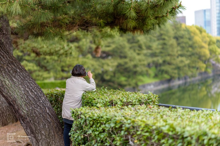 Woman Taking a Photograph of the lake