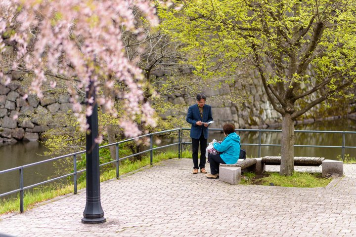 Couple talking near by a Cherry Tree