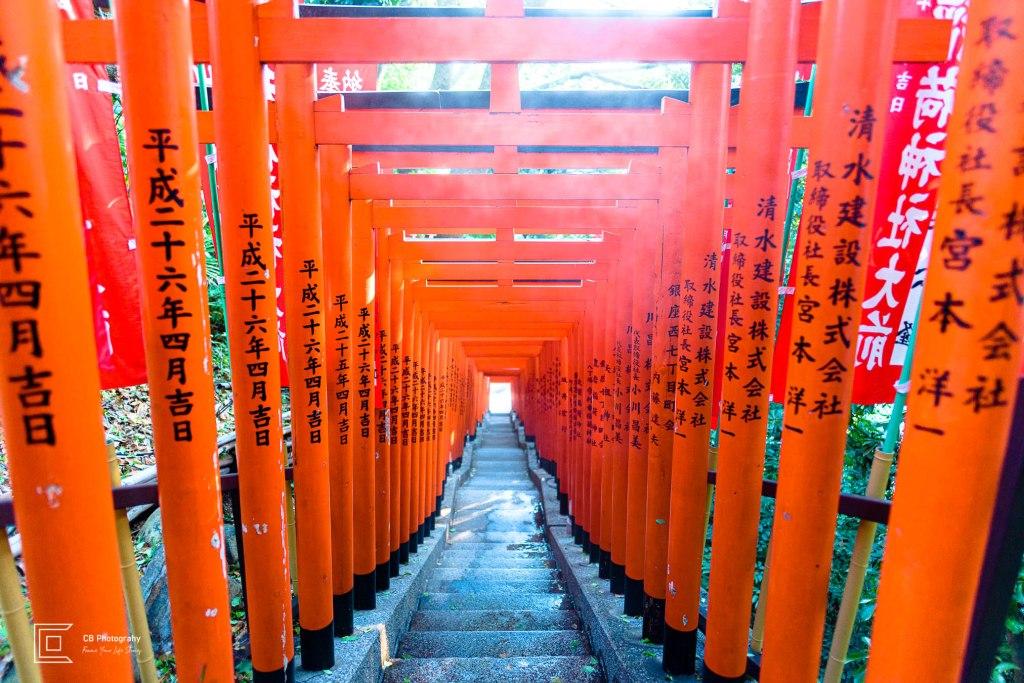 Torii Gates tunnel at Hiw Shrine, Tokyo